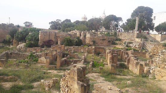 Καρχηδόνα, Τυνησία: Musée de Carthage - les vestiges à l'extérieur -