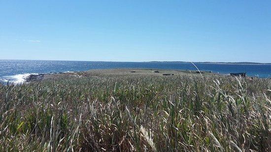 Isola di Levan: 20160823_135603_large.jpg