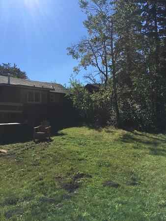 Triple R Cottages : photo2.jpg