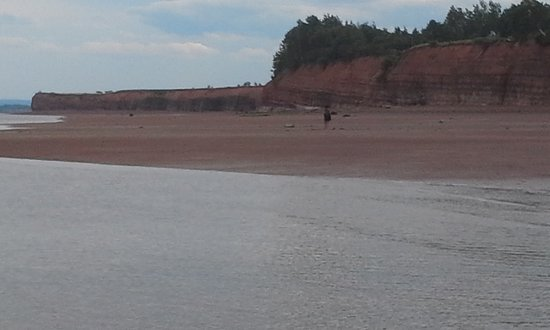Wolfville, Canada: beach with tide out.
