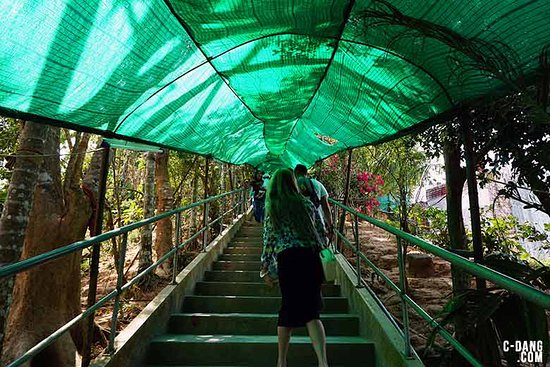 Chalong, Thailand: One of the walks up