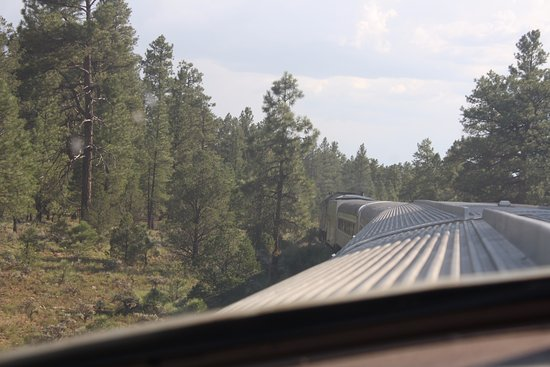 Grand Canyon Railway: From our seat in the dome.