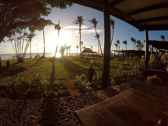 Paradise Taveuni: view across garden from room