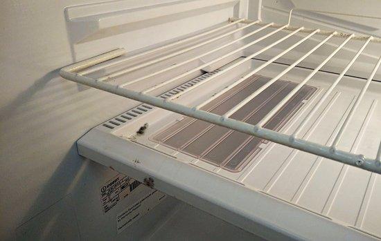 San Gwann, มอลตา: Mini frigo pagato a parte e non utilizzato per via della puzza di muffa al suo interno!!