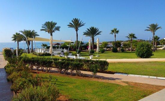Asterias Beach Hotel: Дорожка из отеля к морю