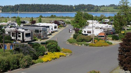 Oceanside RV Resort: Resort View