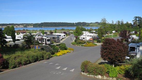 Oceanside RV Resort: Resort Views
