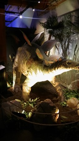 Dubuque, IA: Dinosaur exhibit.