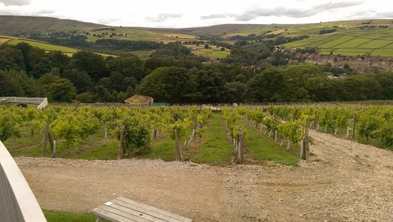 Holmfirth Vineyard: View from restaurant