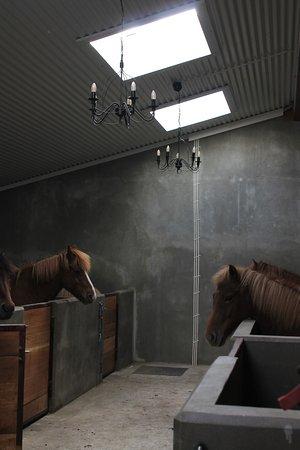 Kopavogur, Islandia: Stylish stables!