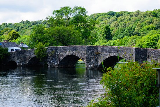 Newby Bridge, UK: View from the terrace.