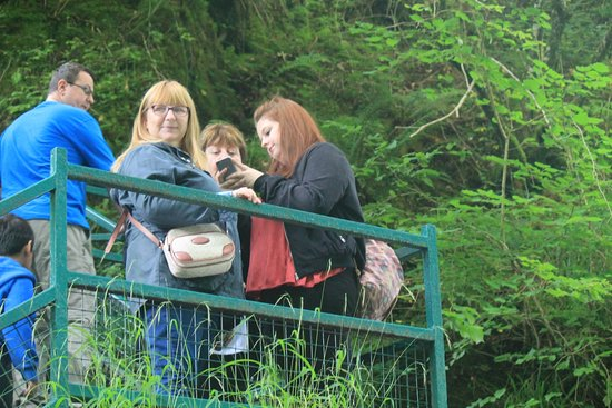 Betws-y-Coed, UK: part of the family