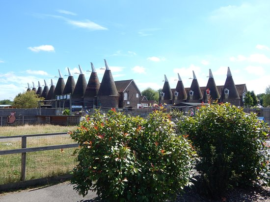 Paddock Wood, UK: The oast houses.