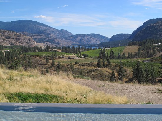 Okanagan Falls, Canada: View with pool in foreground