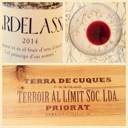 Torroja del Priorat, España: Muy buena selección de vinos de la zona.