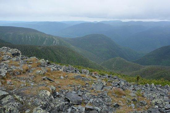Gaspesie Region, Canada: Au sommet du Mont Albert