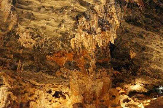 Oudtshoorn, แอฟริกาใต้: FB_IMG_1471966531471_large.jpg