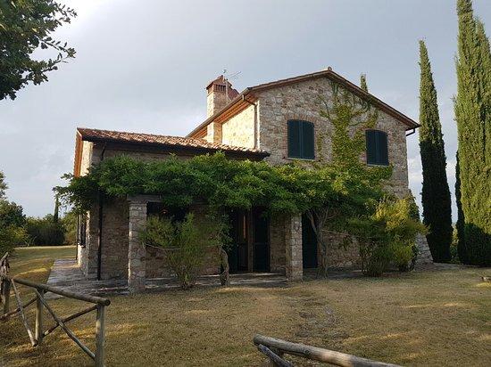 San Venanzo照片