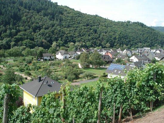 Ediger-Eller, Tyskland: Zicht op Ediger Eller