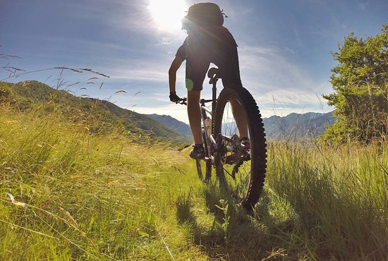 Giubiasco, Svizzera: Guided Bike Tours in Bellinzona