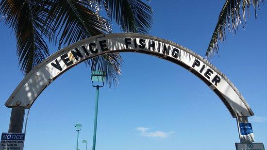 Venice, FL: Right outside of Sharkey's