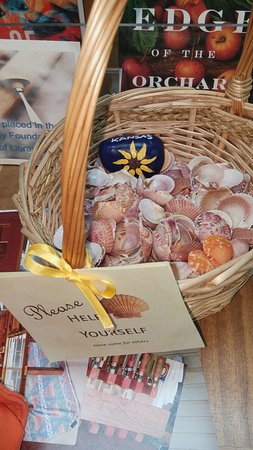 Sanibel Public Library: Be sure to get a scallop as a souvenir!