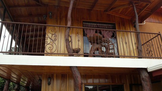Monteverde Rustic Lodge: 20160818_114352_large.jpg