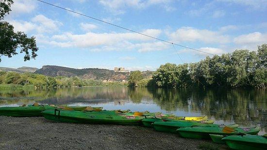 Benifallet, Espagne : IMG-20160823-WA0002_large.jpg