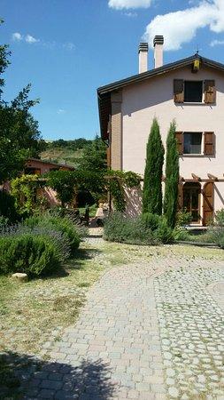 Rastignano, Itália: IMG-20160823-WA0042_large.jpg
