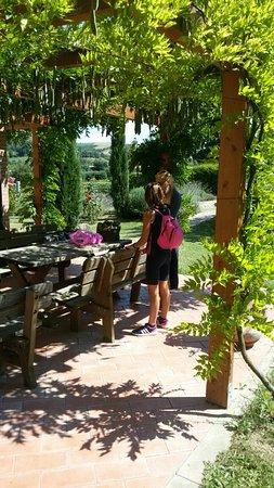 Rastignano, Ιταλία: IMG-20160823-WA0044_large.jpg