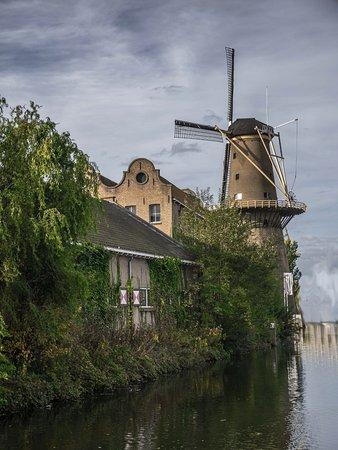 Schiedam, Niederlande: Museummolen De Palmboom