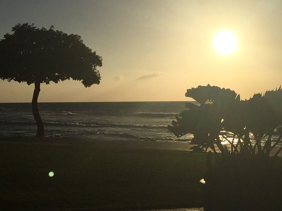 Four Seasons Resort Hualalai: View from Beachtree dinner time