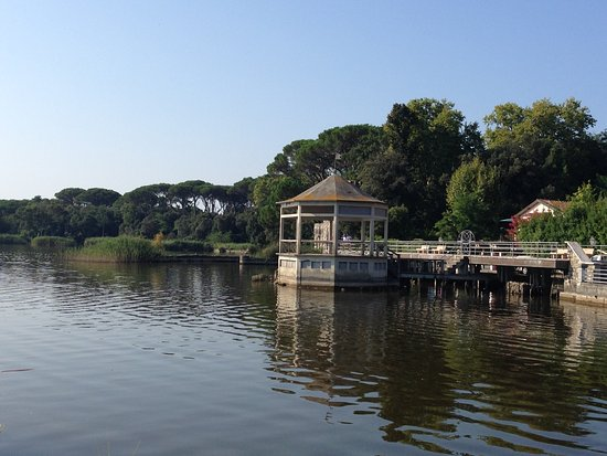 Liù B&B : Vista del Lago Massaciuccoli