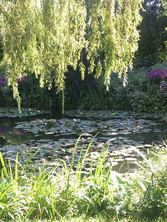 Claude Monet's House and Gardens: photo4.jpg
