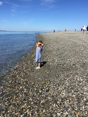 Edmonds, WA: Great little beach area with a small playground spot. Nice grassy area for picnicking...large ar