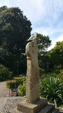Penlee House Gallery & Museum: A very tame seagull outside!