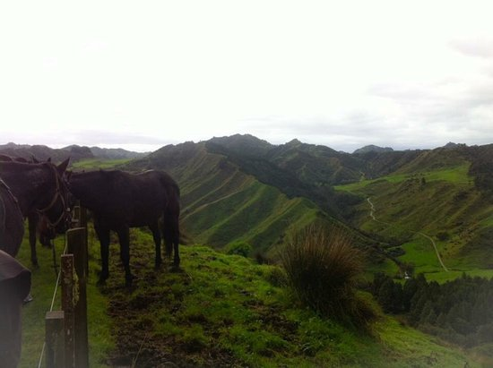 Owhango, New Zealand: photo4.jpg