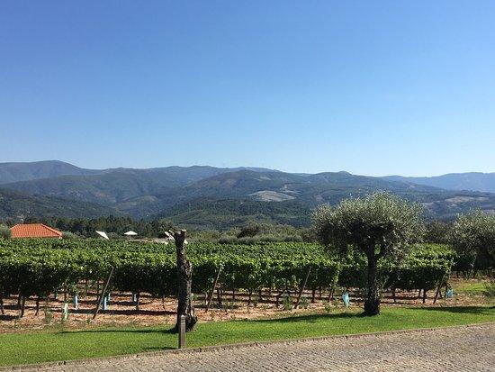 Vila Pouca da Beira, Portugalia: photo0.jpg