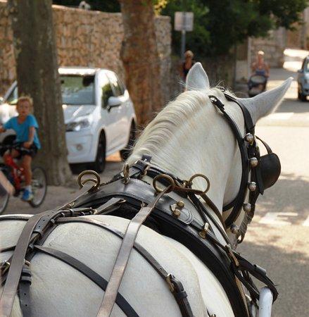 Saint-Remeze, Francja: Rando