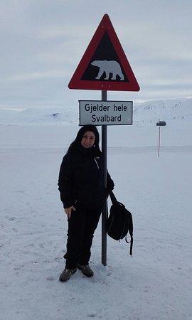 Longyearbyen, Norge: Alla scoperta delle Svalbard con poli  arctici