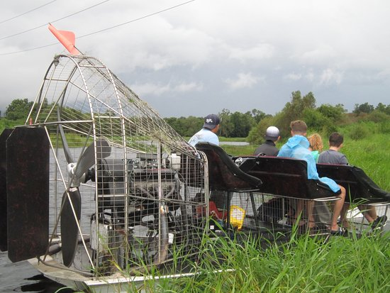 Arcadia, FL: On the look out for alligators