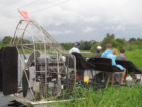 Arcadia, Flórida: On the look out for alligators
