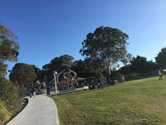 TreeTop Adventure Park Western Sydney: photo2.jpg