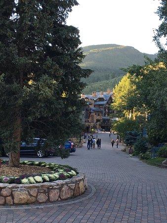 Tivoli Lodge: photo2.jpg
