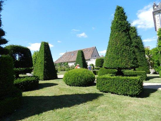 Azay-le-Ferron, Francia: Arbustes taillés