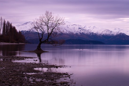 Wanaka, Nueva Zelanda: photo0.jpg