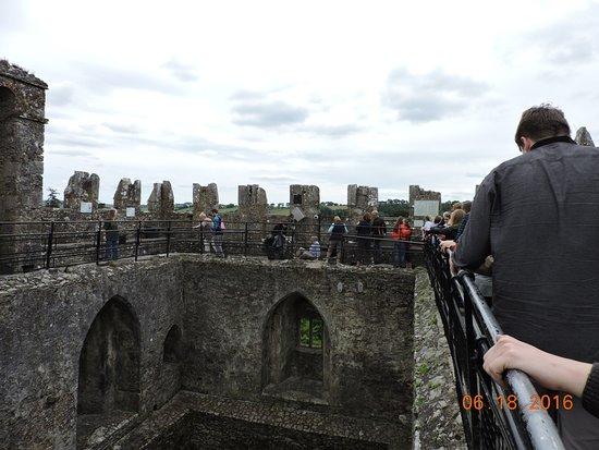 Castelo e Jardins de Blarney: Top of castle, center of back wall is where you kiss the Blarney Stone