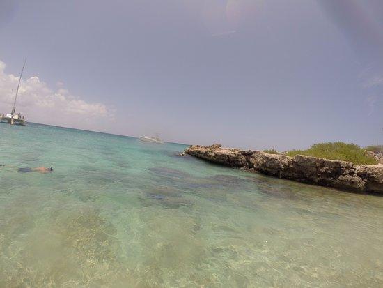 Palm Beach : Fish are around the rocks