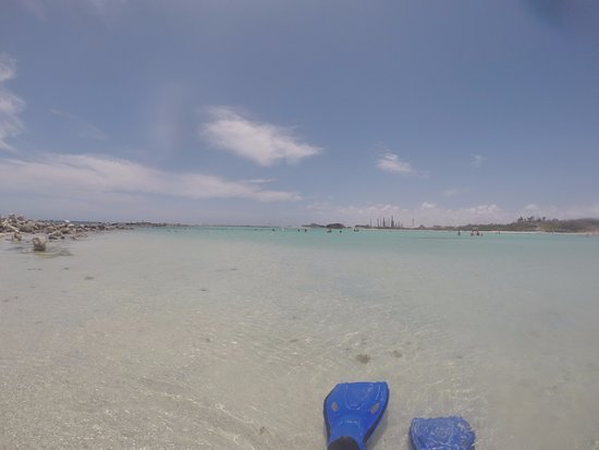 Palm Beach : Snorkeling