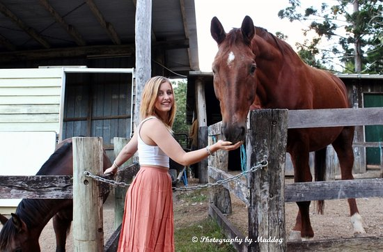 Tallebudgera, Australia: Alby, enjoying a carrot from one of our Guests!